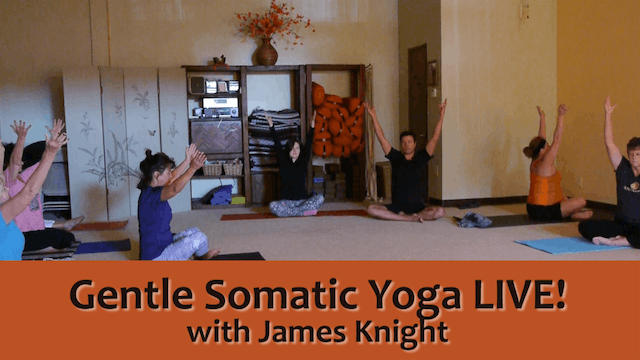 (1 Hr) The Inner Work of Gentle Somatic Yoga with James Knight