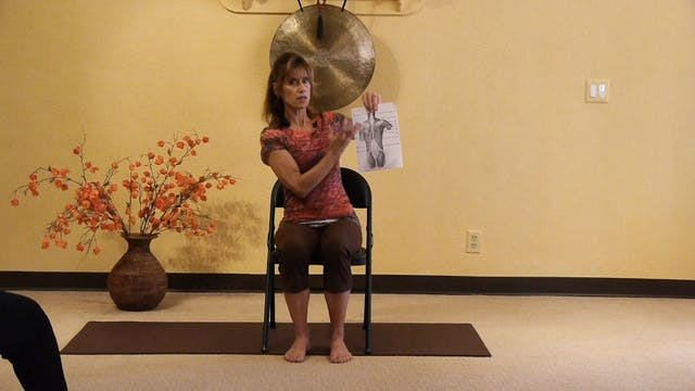 (1 Hr) Chair Yoga to Loosen up your Back! with Sherry Zak Morris