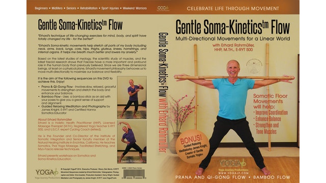 Gentle Soma-Kinetics Flow with Erhard Rohrmuller