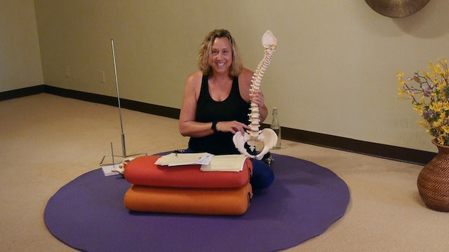 Online Course: Lumbar Disc Damage & Other Spinal Conditions with Justine Shelton