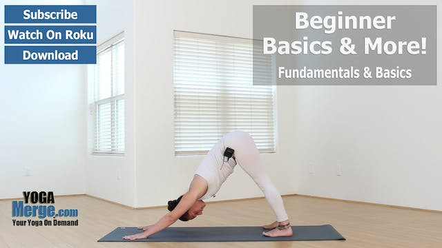 Jen's Basic Fundamentals Flow