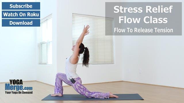 Jen's Fundamentals & Stress Relief