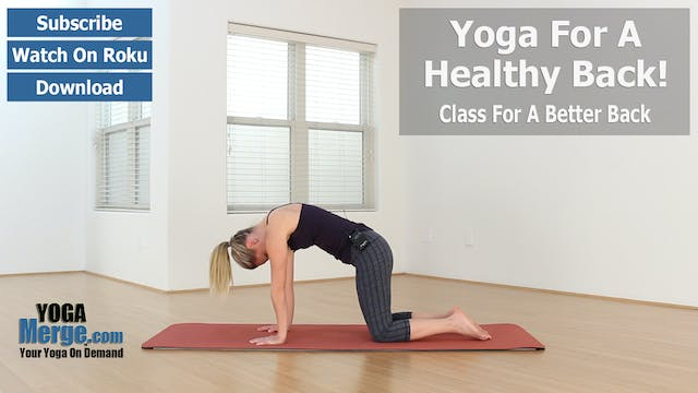 Kim's Yoga For A Healthy Back