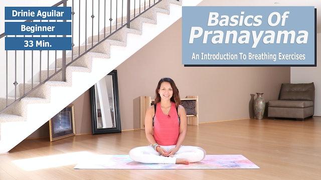Drinie's Pranayama Basics