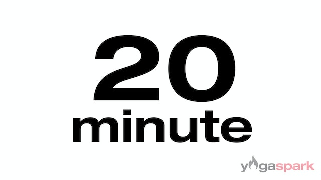 20 minute