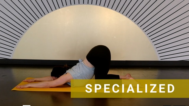 Day 5 of Headstand Foundations - Dolphin Planks with Laura