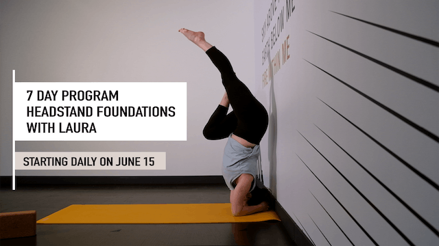 7 Day Headstand Foundations