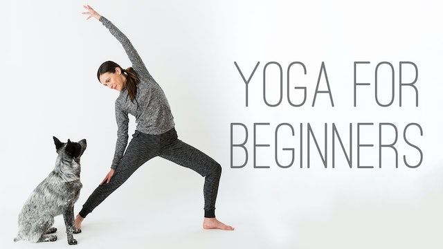 Yoga For Beginners - Find What Feels Good - Yoga with Adriene