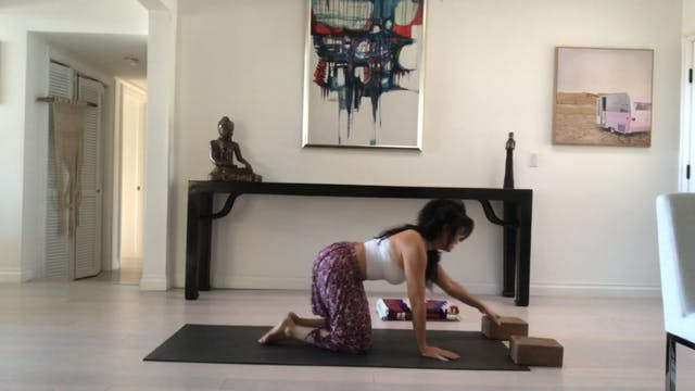 Gentle Vinyasa Level 1 #STAYHOME