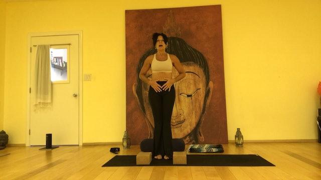 Workshop 7 pt. 2, Meditation, Eagle, One-Leg Mountain, Abs & Floor Poses