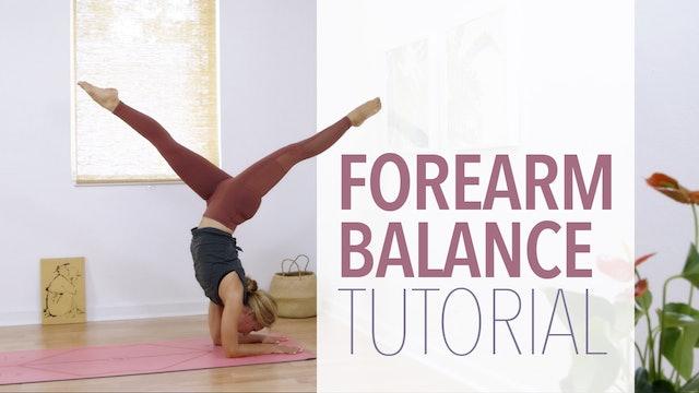 Forearm Balance Tutorial