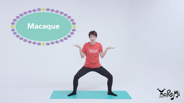 Macaque (Goddess Pose & Chair Pose)