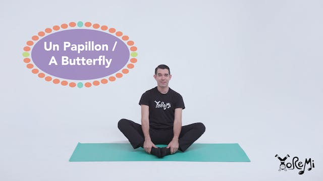 Papillon (Butterfly Pose)