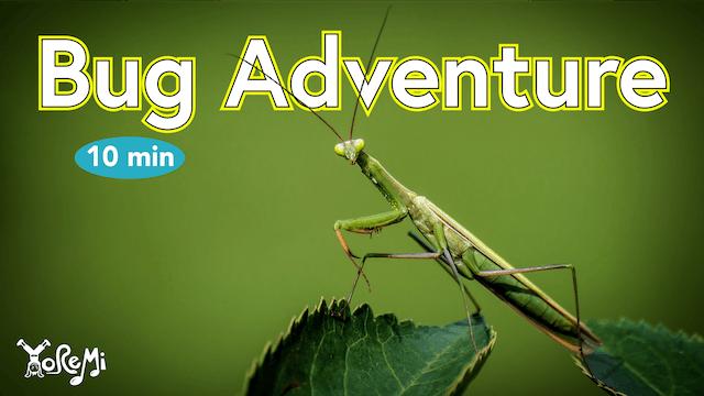Bug Adventure - 10 Minutes