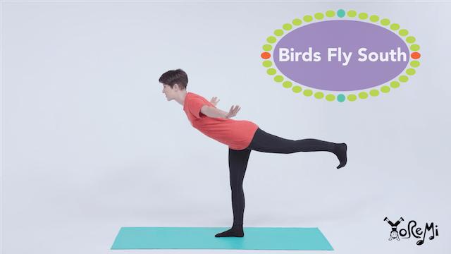 Birds Fly South (Warrior 3 Pose)