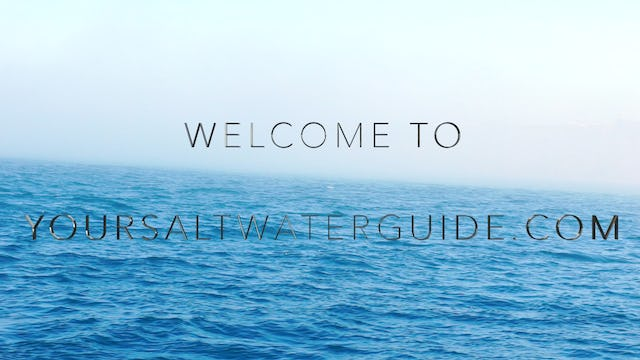 Your Saltwater Guide Subscription