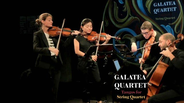 Galatea Quartet «Tango»