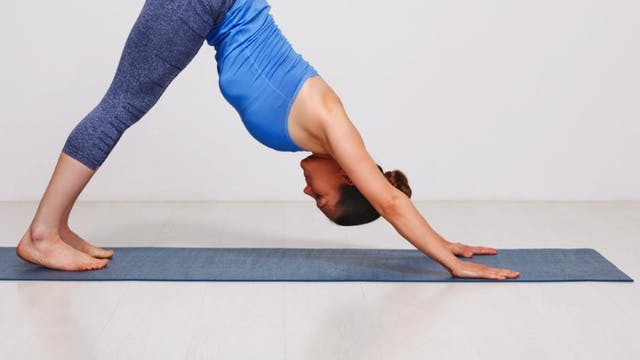 Balance & Focus Hatha