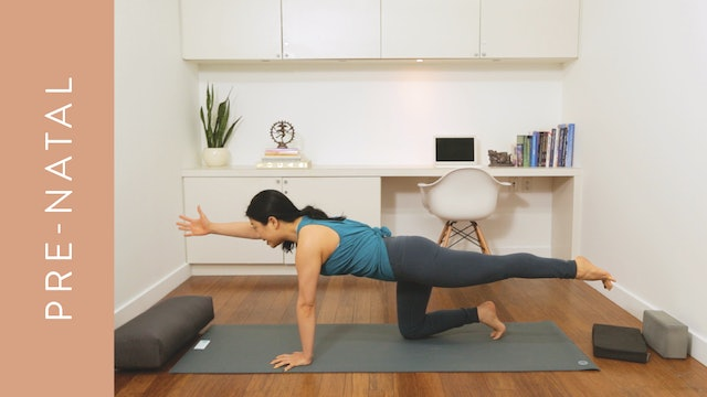 Flow Yoga: Pre-Natal Ab and Arm Routine (10 min) — with Quyhn Mi