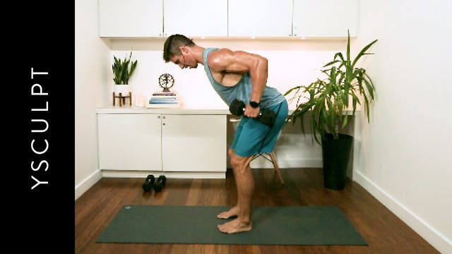YSculpt: Back and Biceps (20 min) – w...