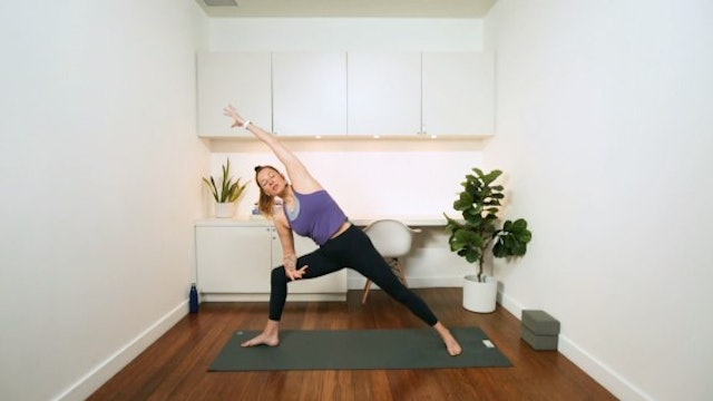 Back Strength Flow (50 min) - with Vanessa Bourget