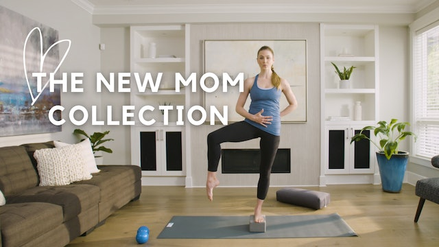 The New & Expecting Mom Collection
