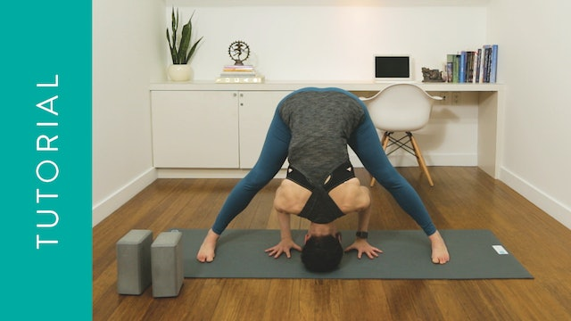 Flow Yoga: Safe Inversions For Beginners (15 min) — with Rachel Scott