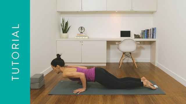 Tutorial: How to Chaturanga Safely for all Levels (10 min — with Jasmina Egeler
