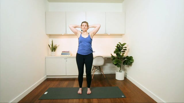 Pilates for Beginners: the Spine (30 ...
