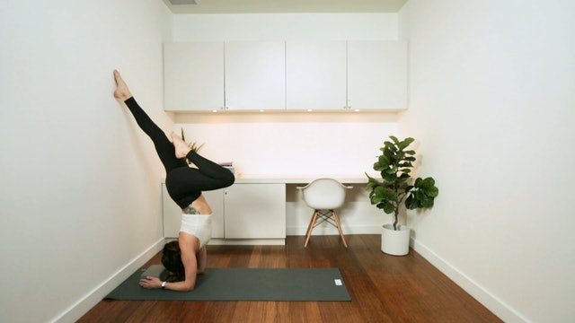Wall Inversions Prep: Forearm Stand (14 min) - with Vanessa Bourget