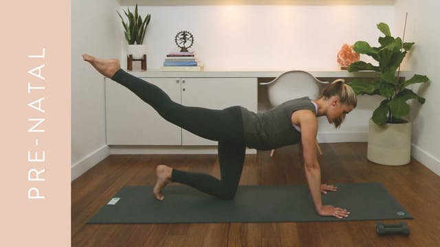 Pre-natal Pilates: Full Body Workout (30 min) — with Heather Obre (McEwen)