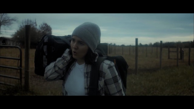 The Traveler video