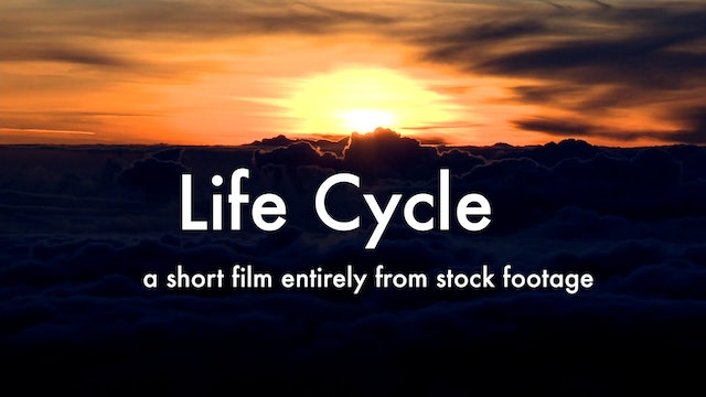 LifeCycle video