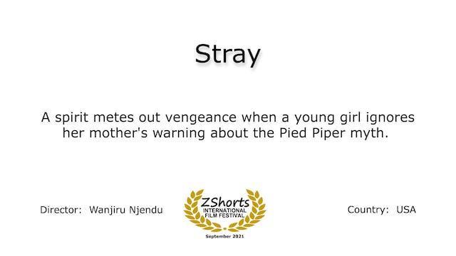 Stray Intro 2109