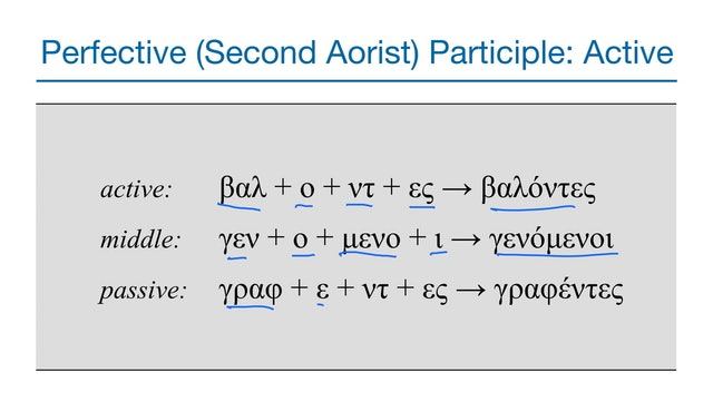 Basics of Biblical Greek - Session 28 - Perfective Adverbial Participles
