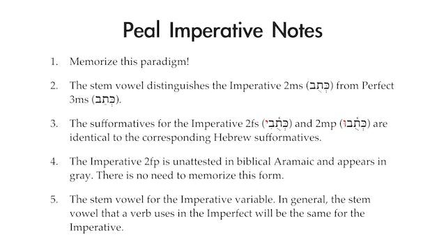 Basics of Biblical Aramaic - Session 15 - Peal Imperative