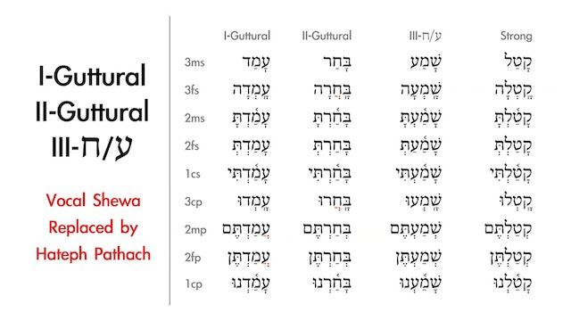 Basics of Biblical Hebrew - Session 14 - Qal Perfect Weak Verbs
