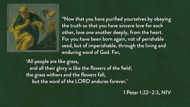 1 Peter - Session 5 - 1 Peter 1:22-2:3