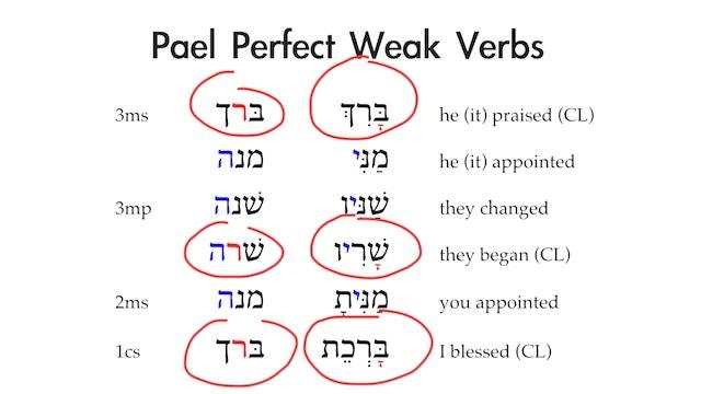 Basics of Biblical Aramaic - Session 19 - Pael Stem