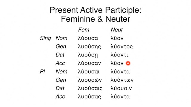 Reading Biblical Greek - Session 54A - Participles: Feminine and Neuter