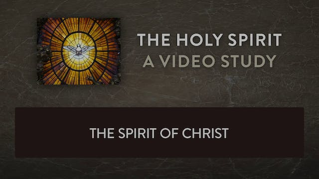 The Holy Spirit - Session 7 - The Spi...