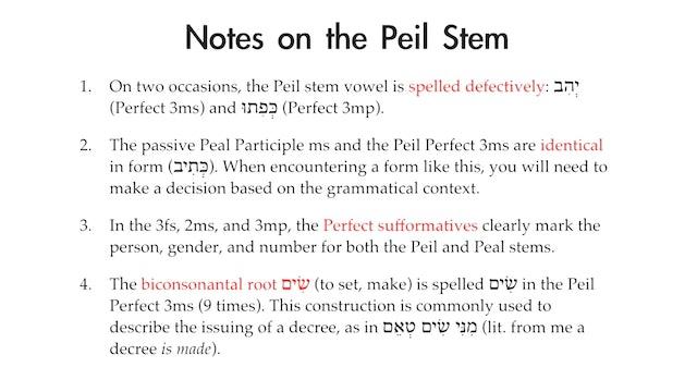 Basics of Biblical Aramaic - Session 18 - Peil, Hithpeel, and Ithpeel Stems