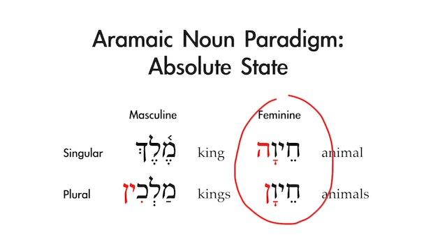 Basics of Biblical Aramaic - Session 4 - Nouns: Absolute State