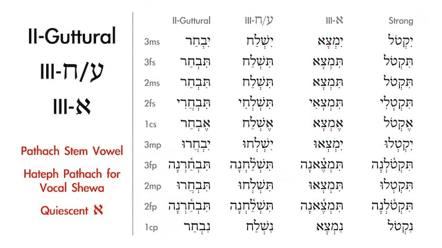Basics of Biblical Hebrew - Session 16 - Qal Imperfect Weak Verbs