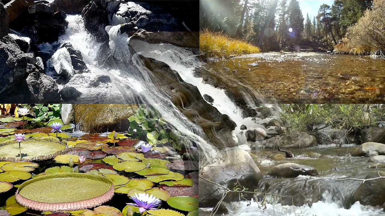 Collection: Streams and Waterfalls