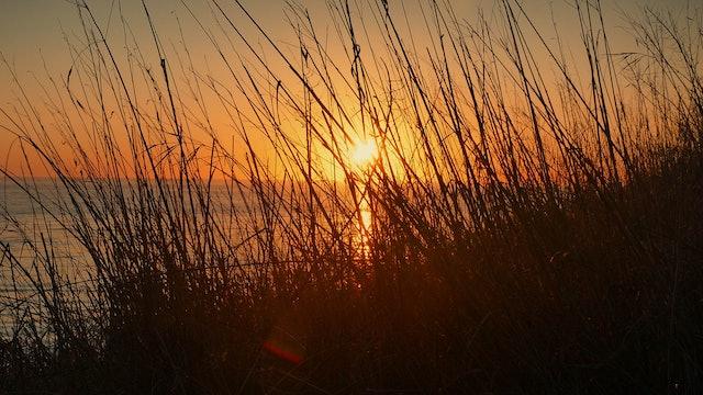 ZoneOut TV - Fall Sunset