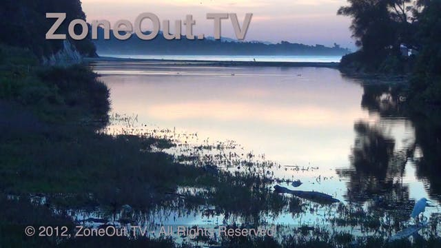 ZoneOutTV - Sunrise Lagoon