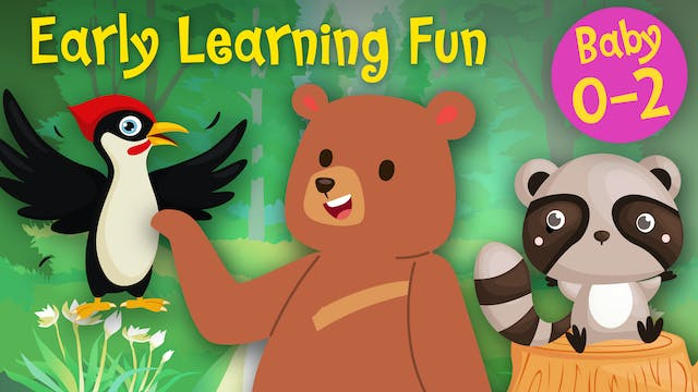 Forest Animals Vol.1 | Early Learning...