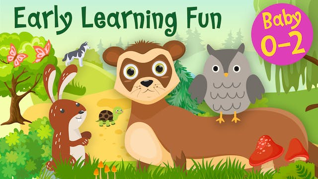Forest Animals Vol.3 | Early Learning...
