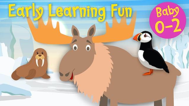 Polar Animals Vol.2 | Early Learning Fun